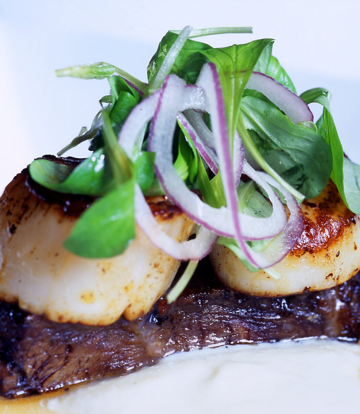 An order of scallops overtop of braised shortrib served at Todd English's Bluezoo at the Walt Disney World Dolphin